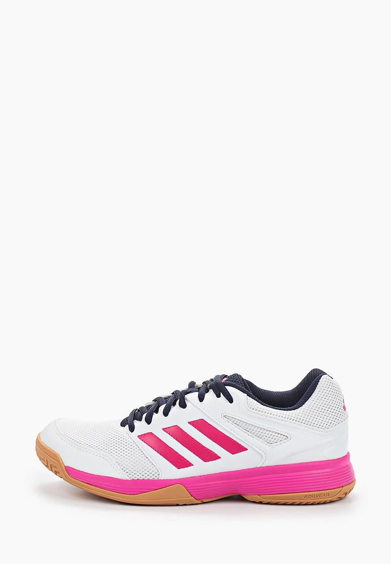 Adidas (Адидас) EF2622: изображение 1