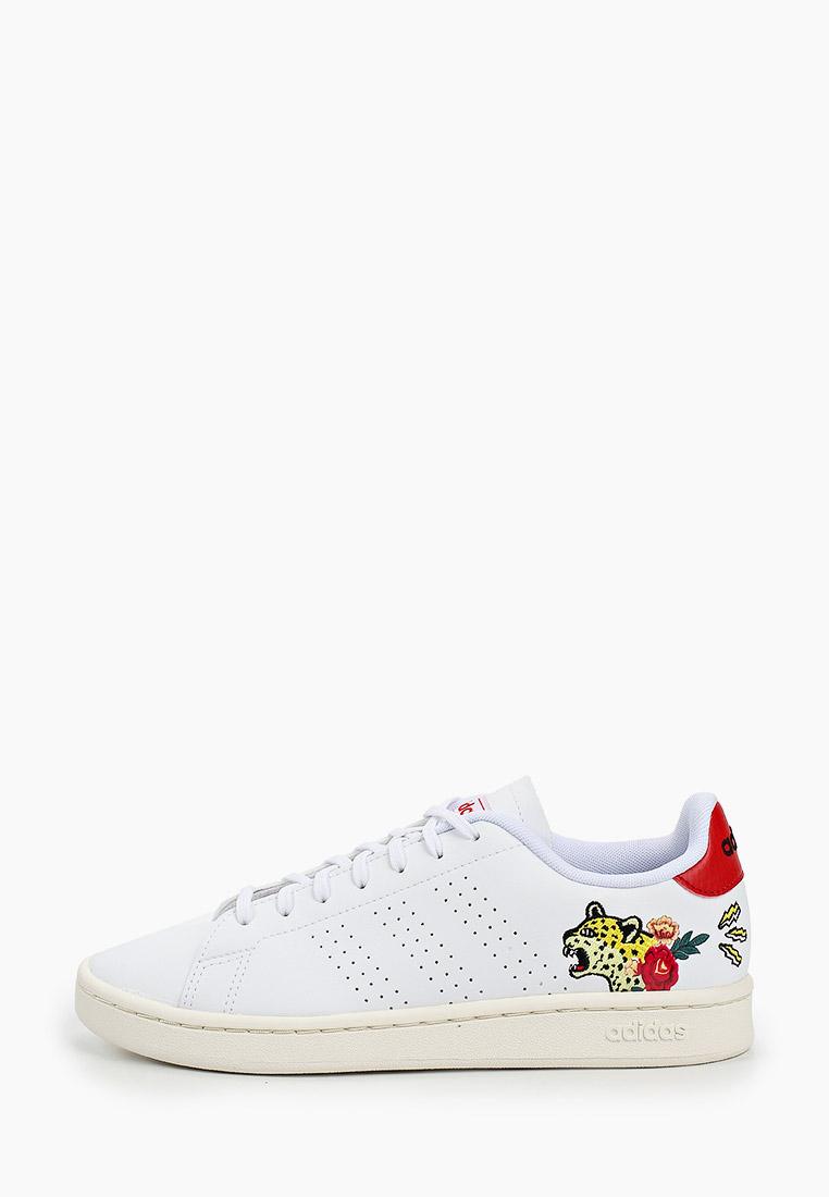 Adidas (Адидас) EH3425: изображение 1