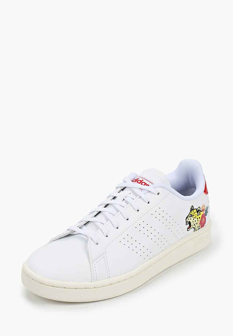 Adidas (Адидас) EH3425: изображение 2