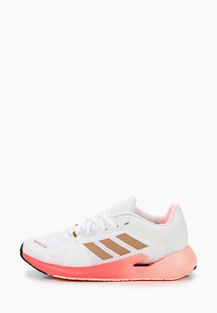 Adidas (Адидас) EG5077: изображение 1