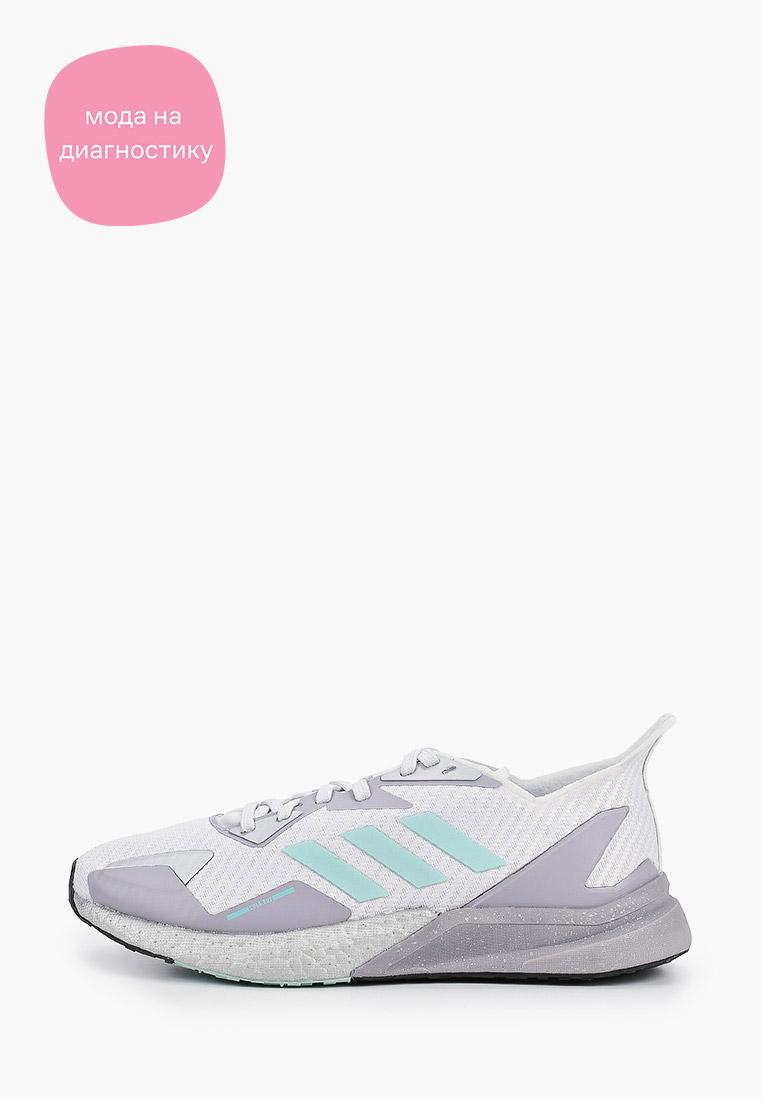 Женские кроссовки Adidas (Адидас) FW8059