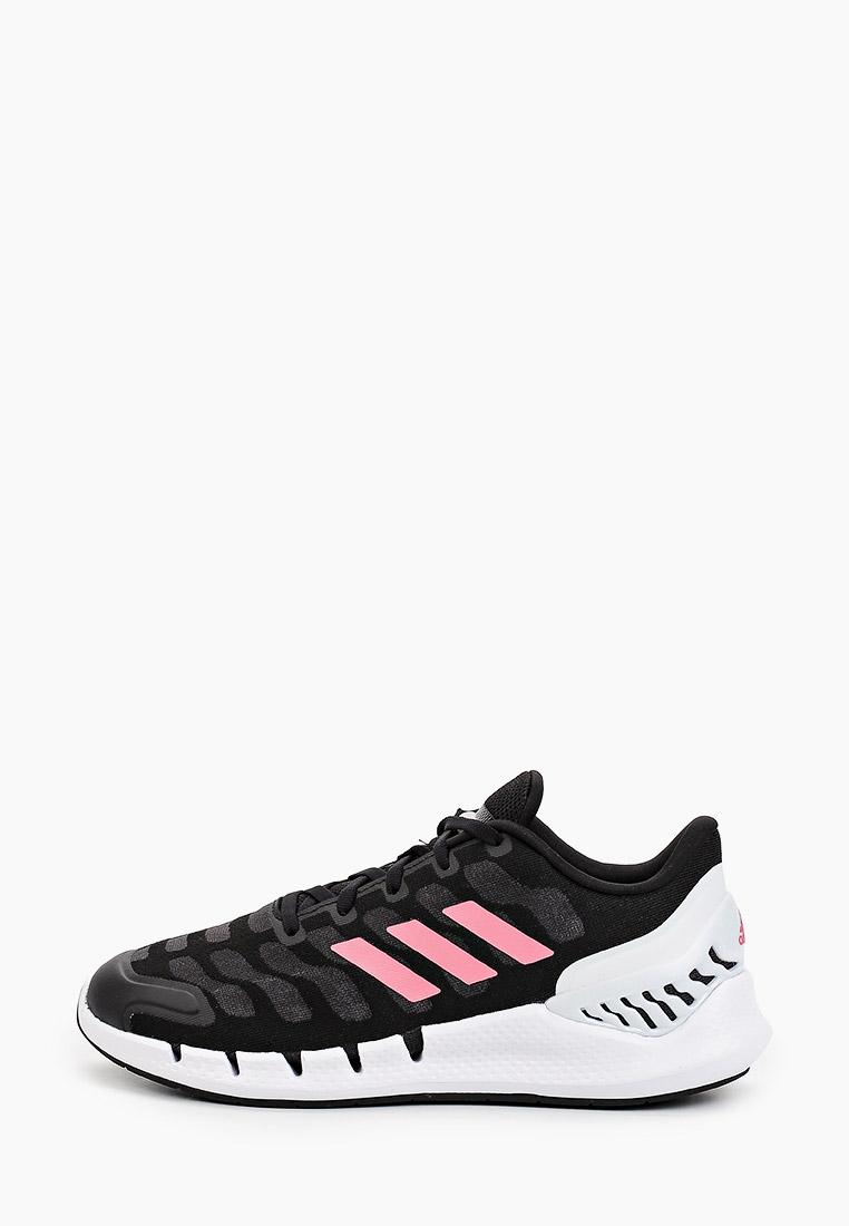 Женские кроссовки Adidas (Адидас) FW1226
