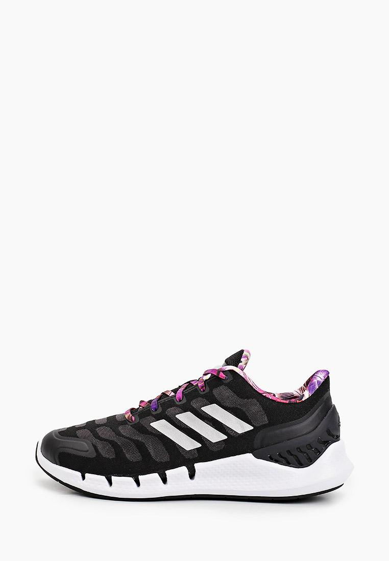 Женские кроссовки Adidas (Адидас) FX7359