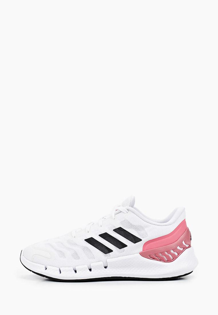 Женские кроссовки Adidas (Адидас) FX7356