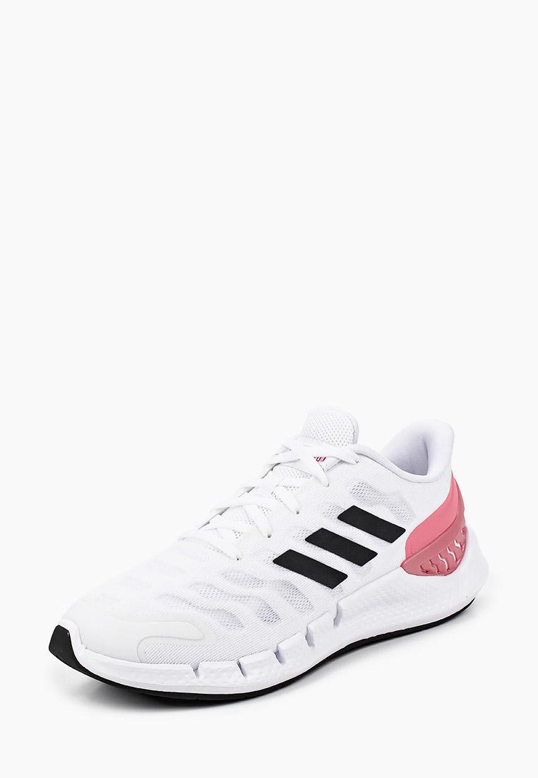 Женские кроссовки Adidas (Адидас) FX7356: изображение 2