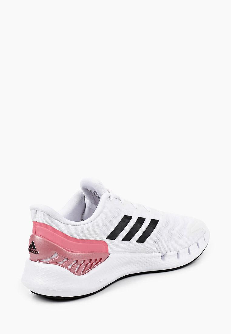Женские кроссовки Adidas (Адидас) FX7356: изображение 3
