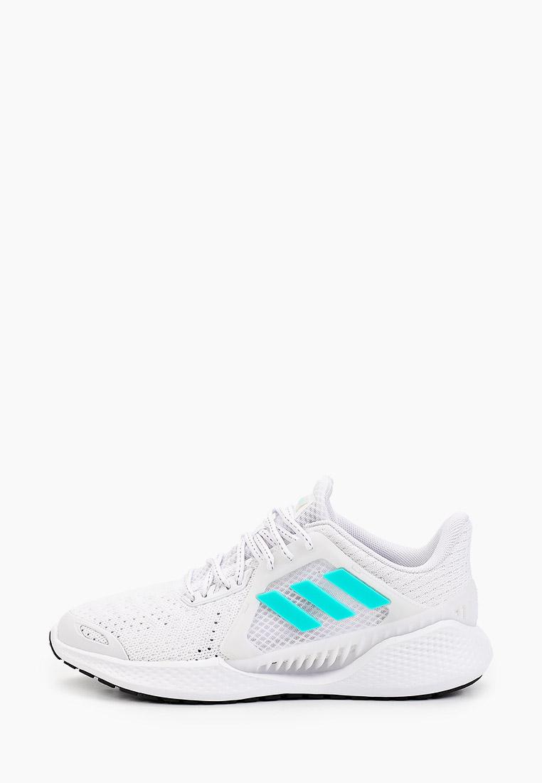 Женские кроссовки Adidas (Адидас) FZ2407