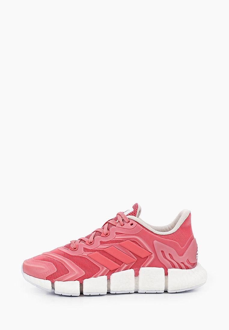 Женские кроссовки Adidas (Адидас) FW6841: изображение 1
