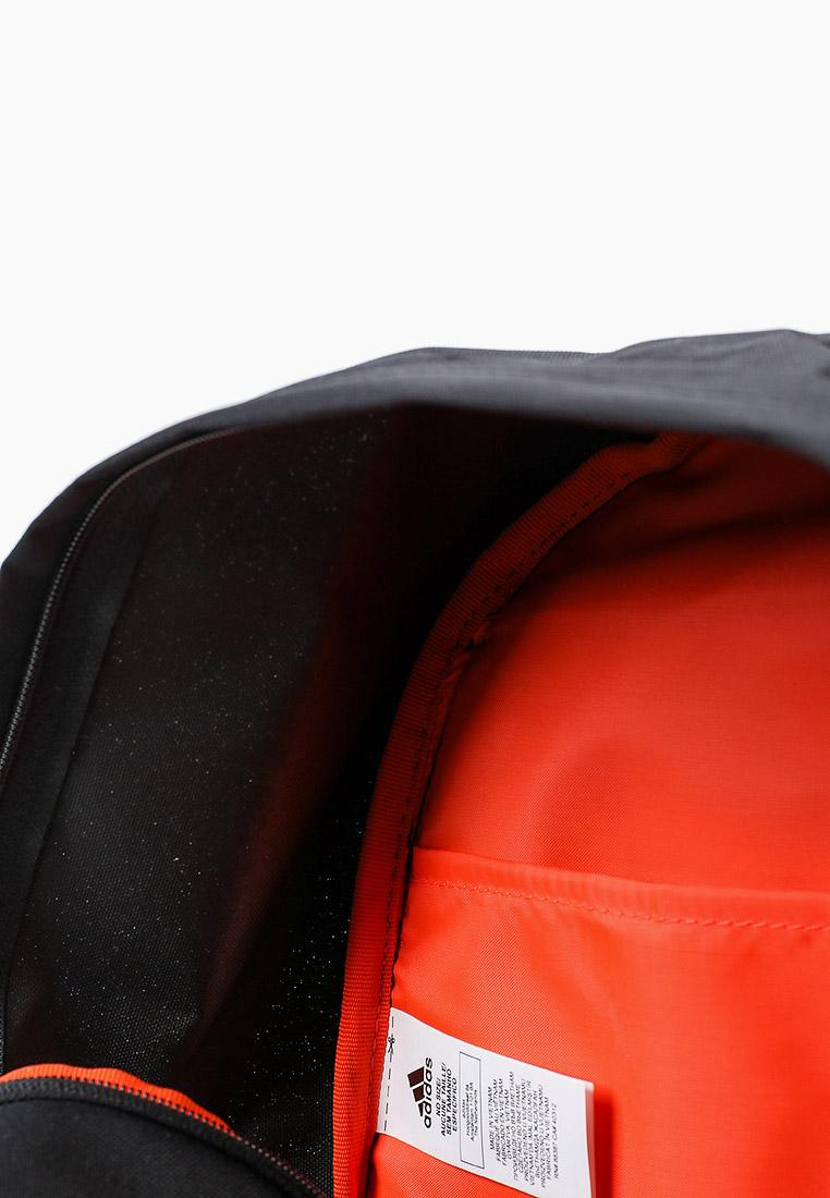 Adidas (Адидас) GK6876: изображение 3