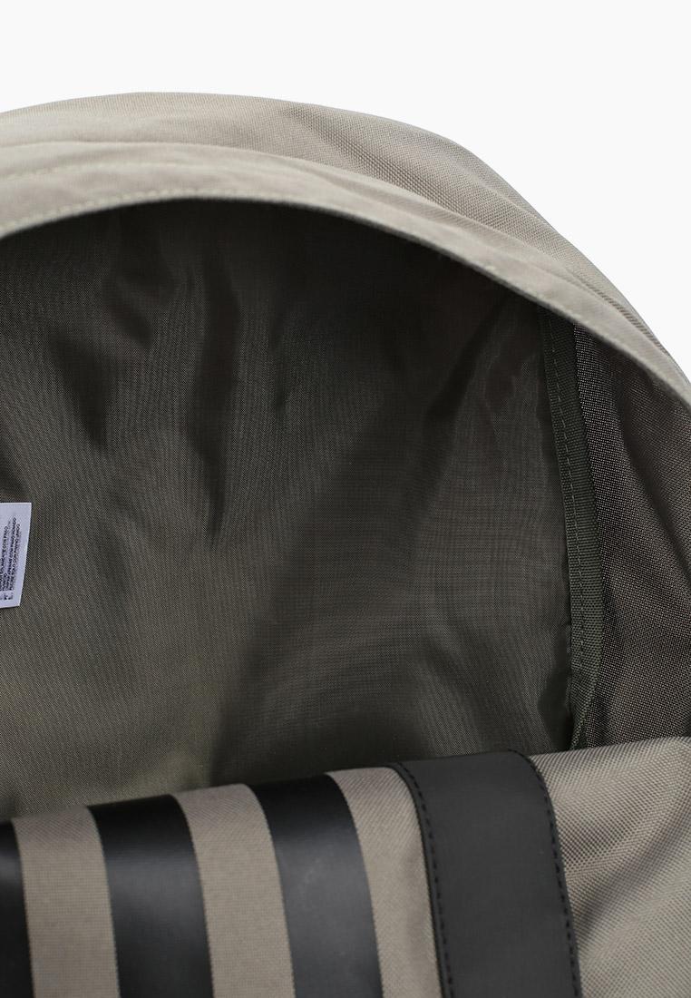 Adidas (Адидас) GE6150: изображение 3
