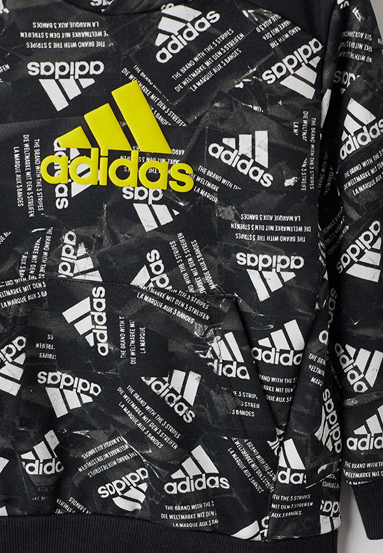 Толстовка Adidas (Адидас) GJ6636: изображение 3