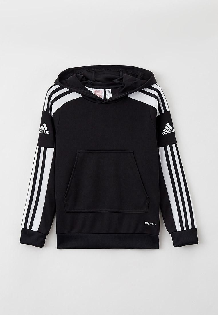 Толстовка Adidas (Адидас) GK9544: изображение 1