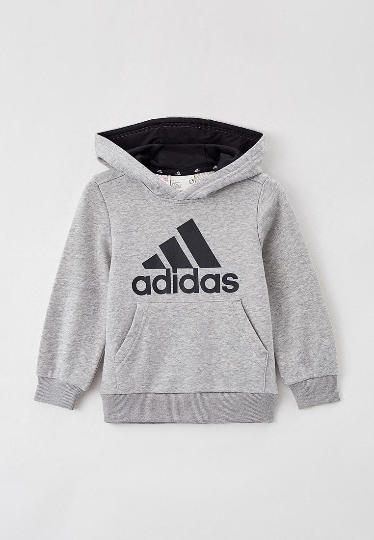 Толстовка Adidas (Адидас) GN4019