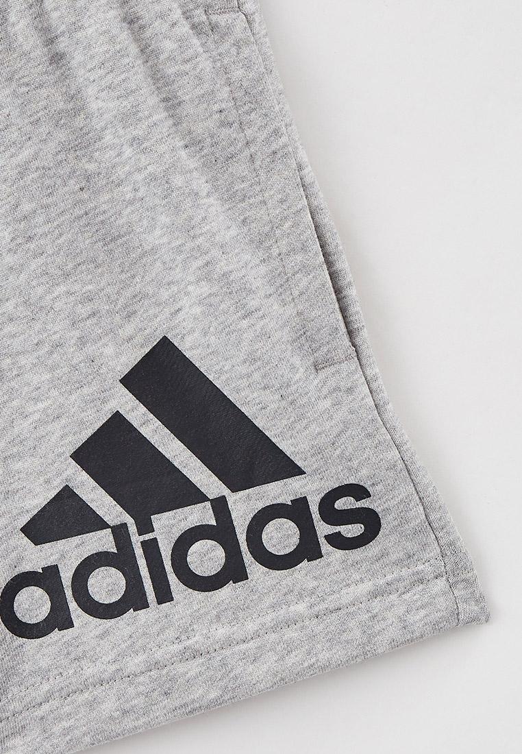 Шорты для мальчиков Adidas (Адидас) GN4022: изображение 3