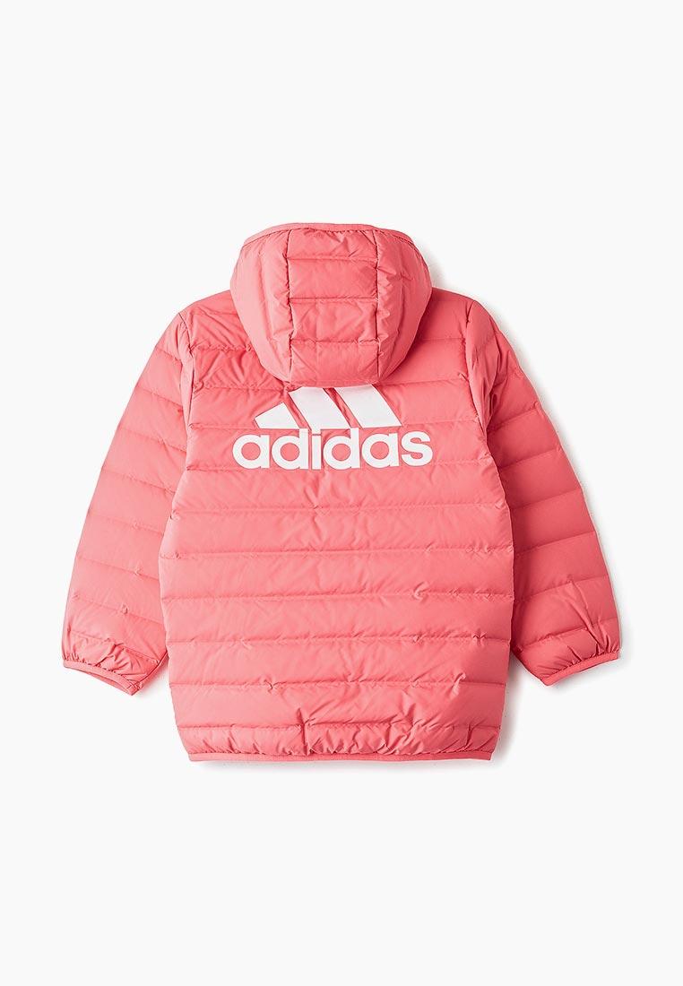Adidas (Адидас) EH4145: изображение 2