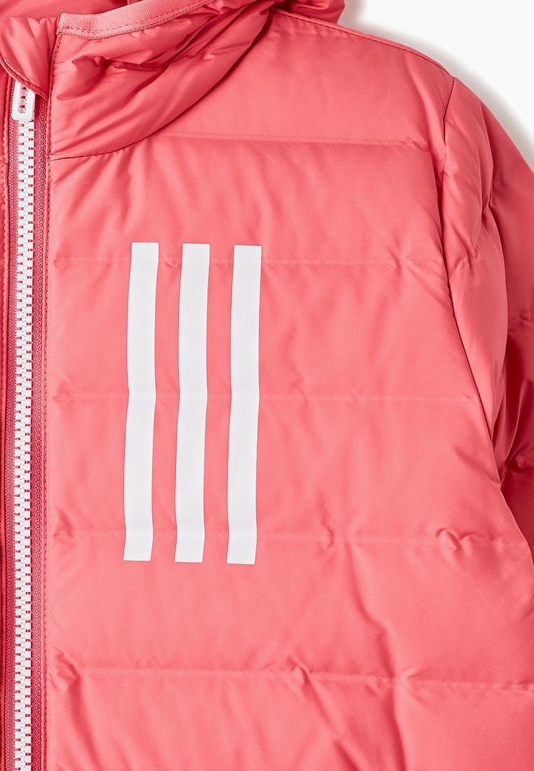 Adidas (Адидас) EH4145: изображение 3
