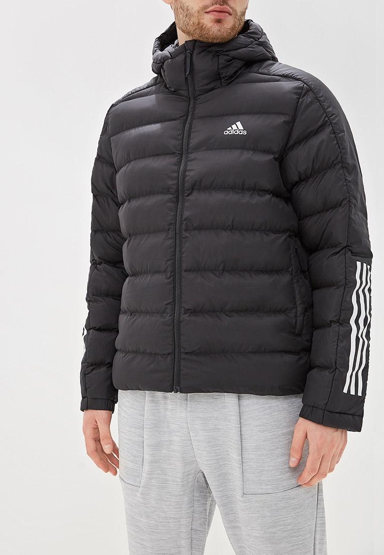Мужская верхняя одежда Adidas (Адидас) DZ1388