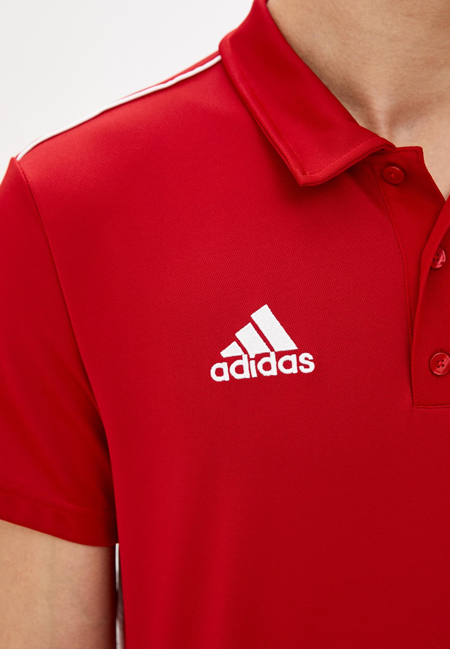 Мужские поло Adidas (Адидас) CV3591: изображение 4