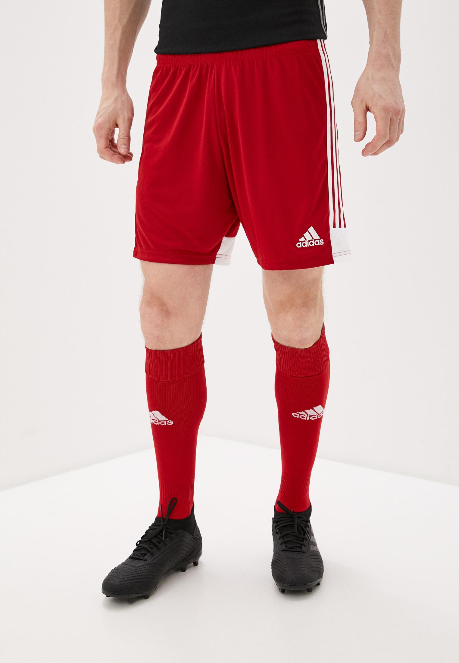 Мужские спортивные шорты Adidas (Адидас) DP3681