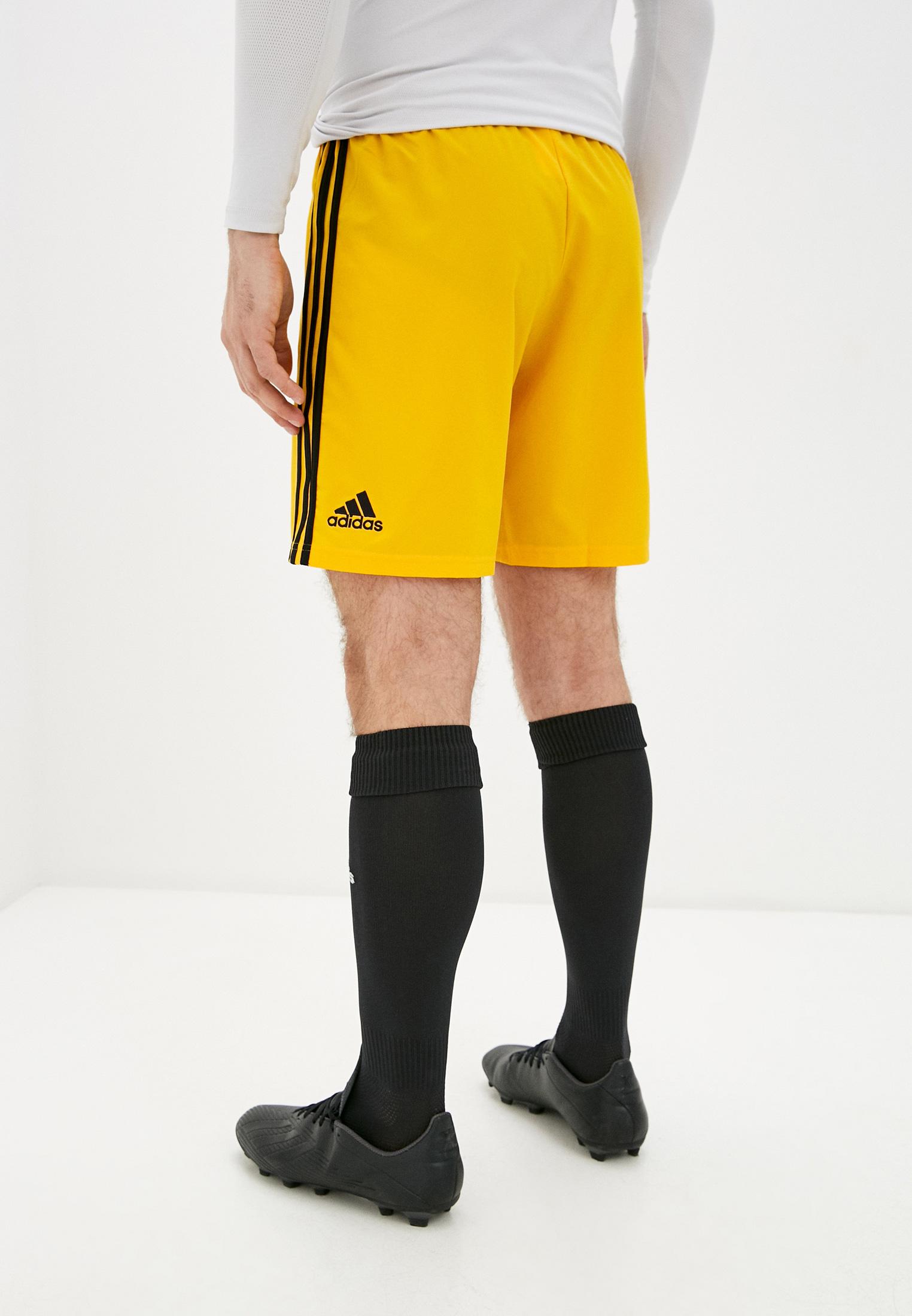 Мужские спортивные шорты Adidas (Адидас) DP5369: изображение 3