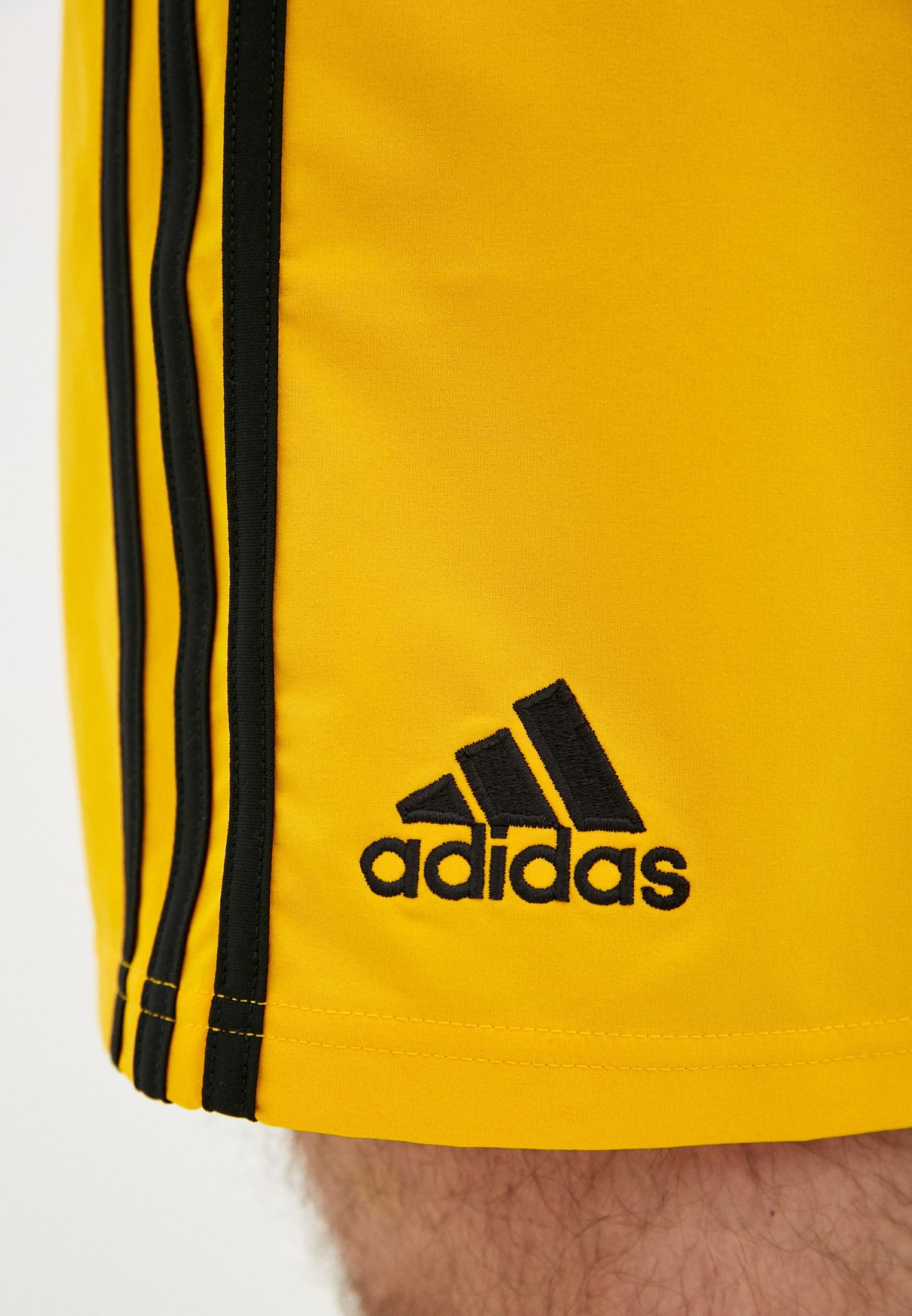 Мужские спортивные шорты Adidas (Адидас) DP5369: изображение 4