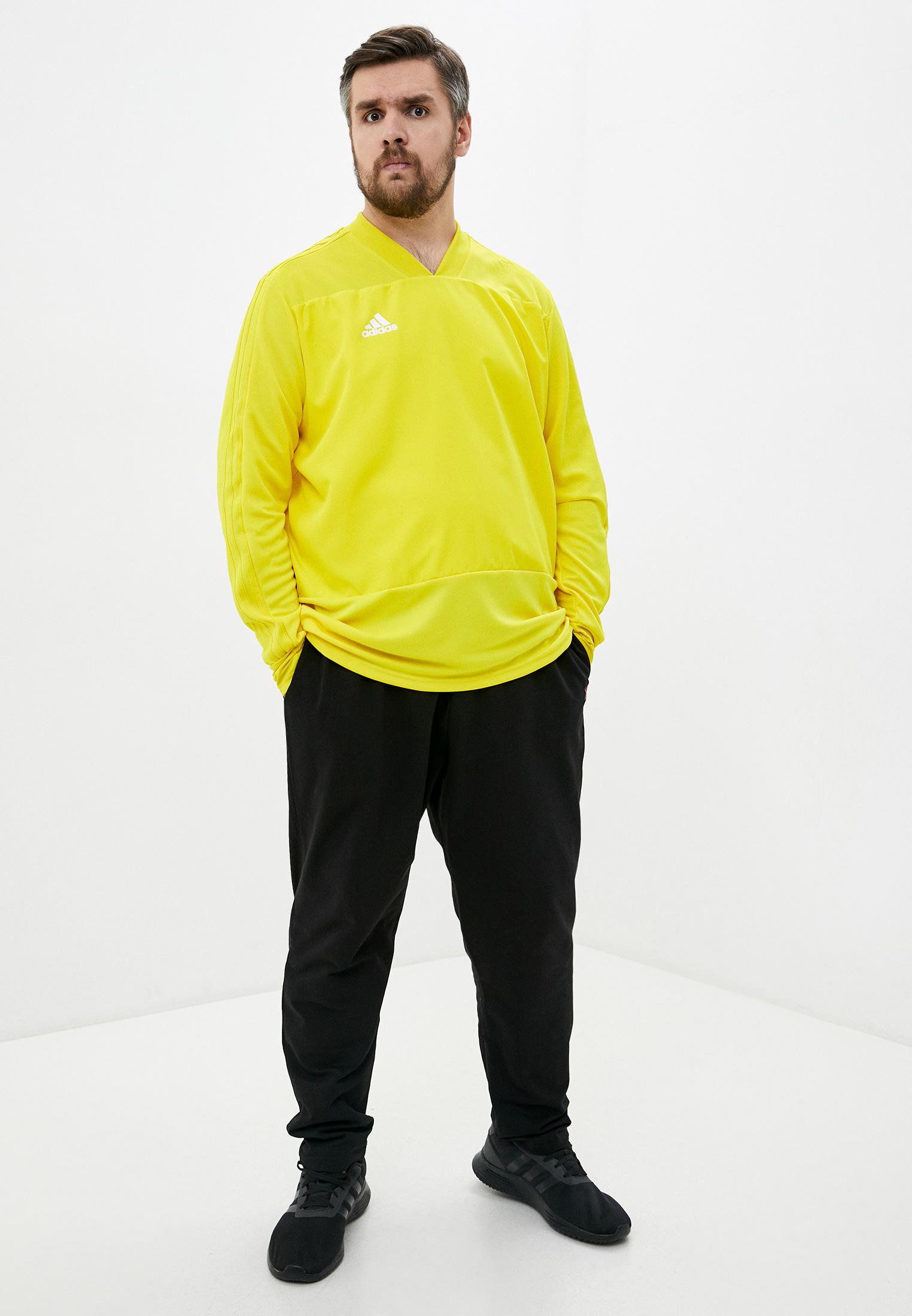 Спортивная футболка Adidas (Адидас) CG0384: изображение 5
