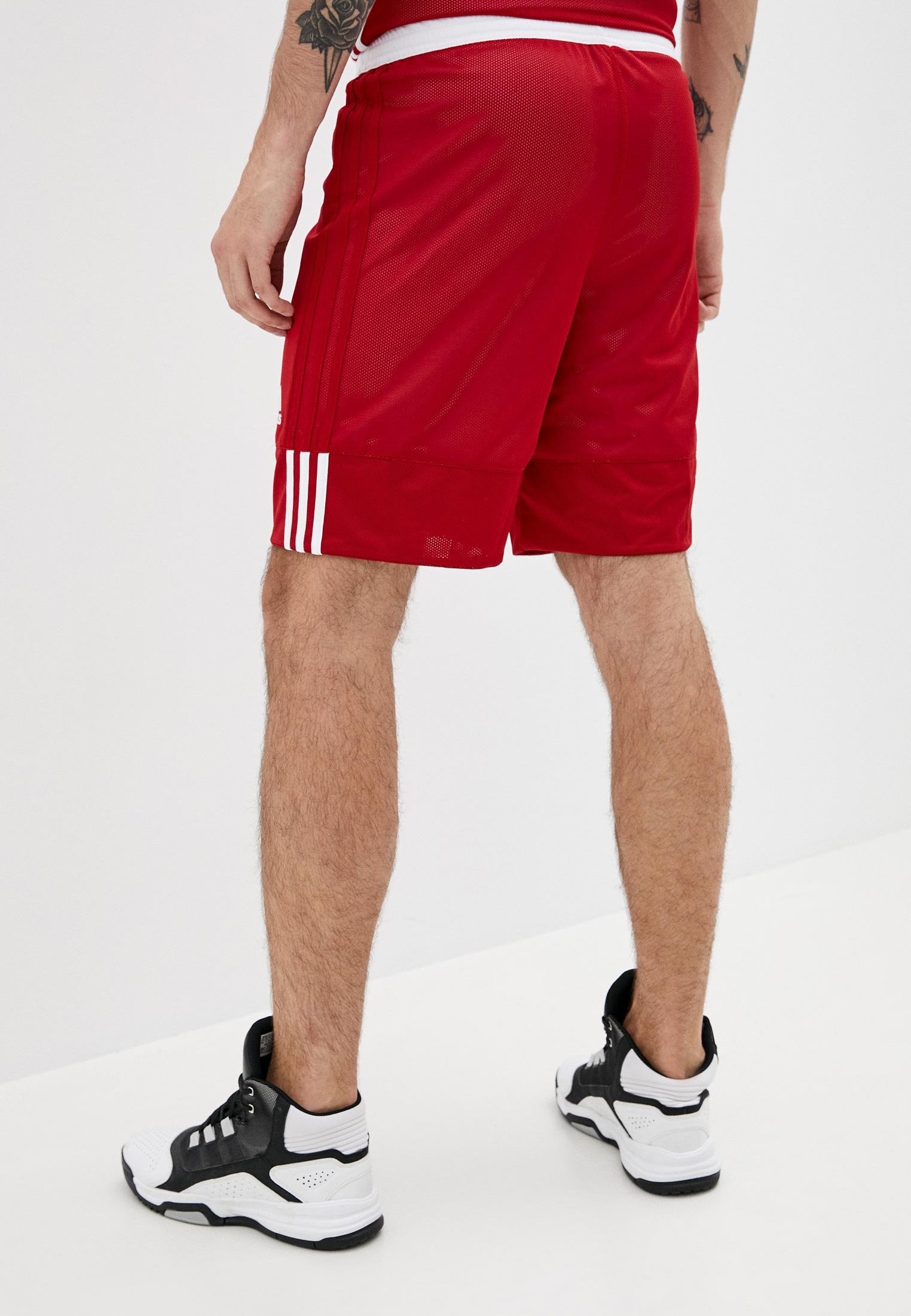 Мужские спортивные шорты Adidas (Адидас) DY6603: изображение 3