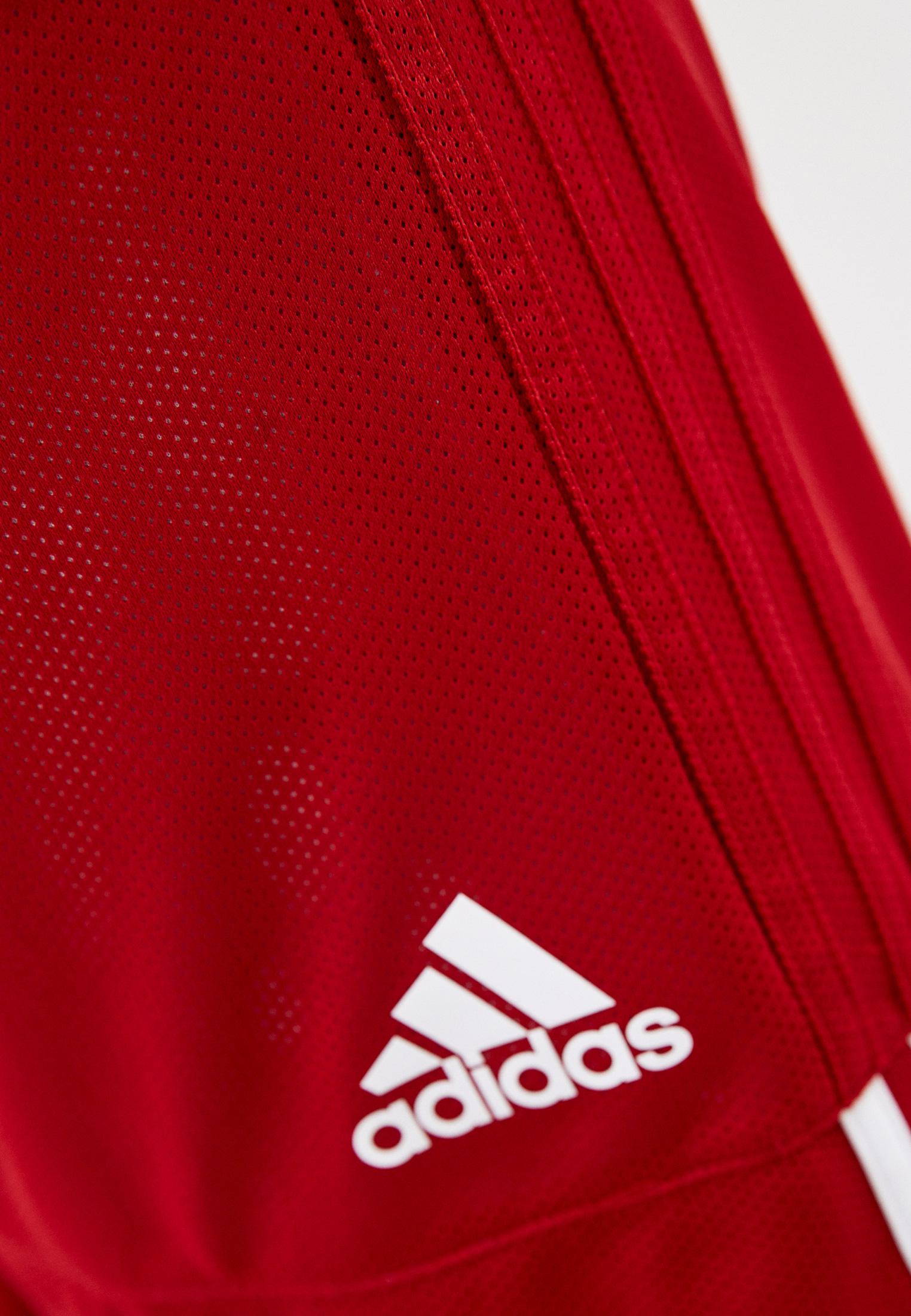 Мужские спортивные шорты Adidas (Адидас) DY6603: изображение 4