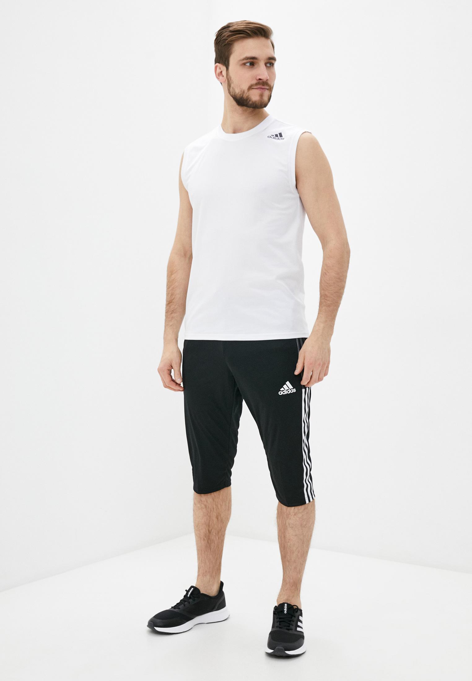 Мужские спортивные шорты Adidas (Адидас) GM7375: изображение 2