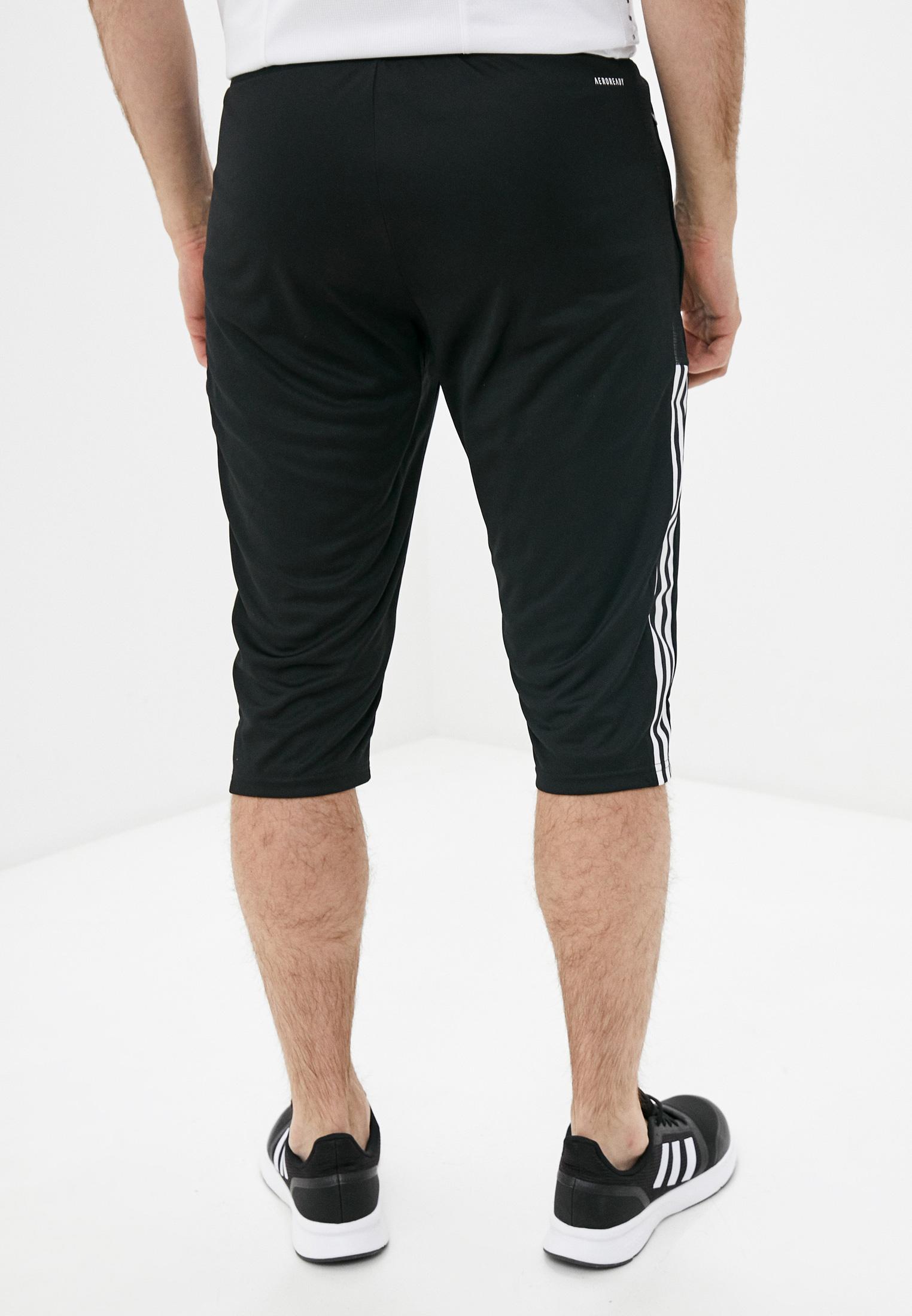 Мужские спортивные шорты Adidas (Адидас) GM7375: изображение 3