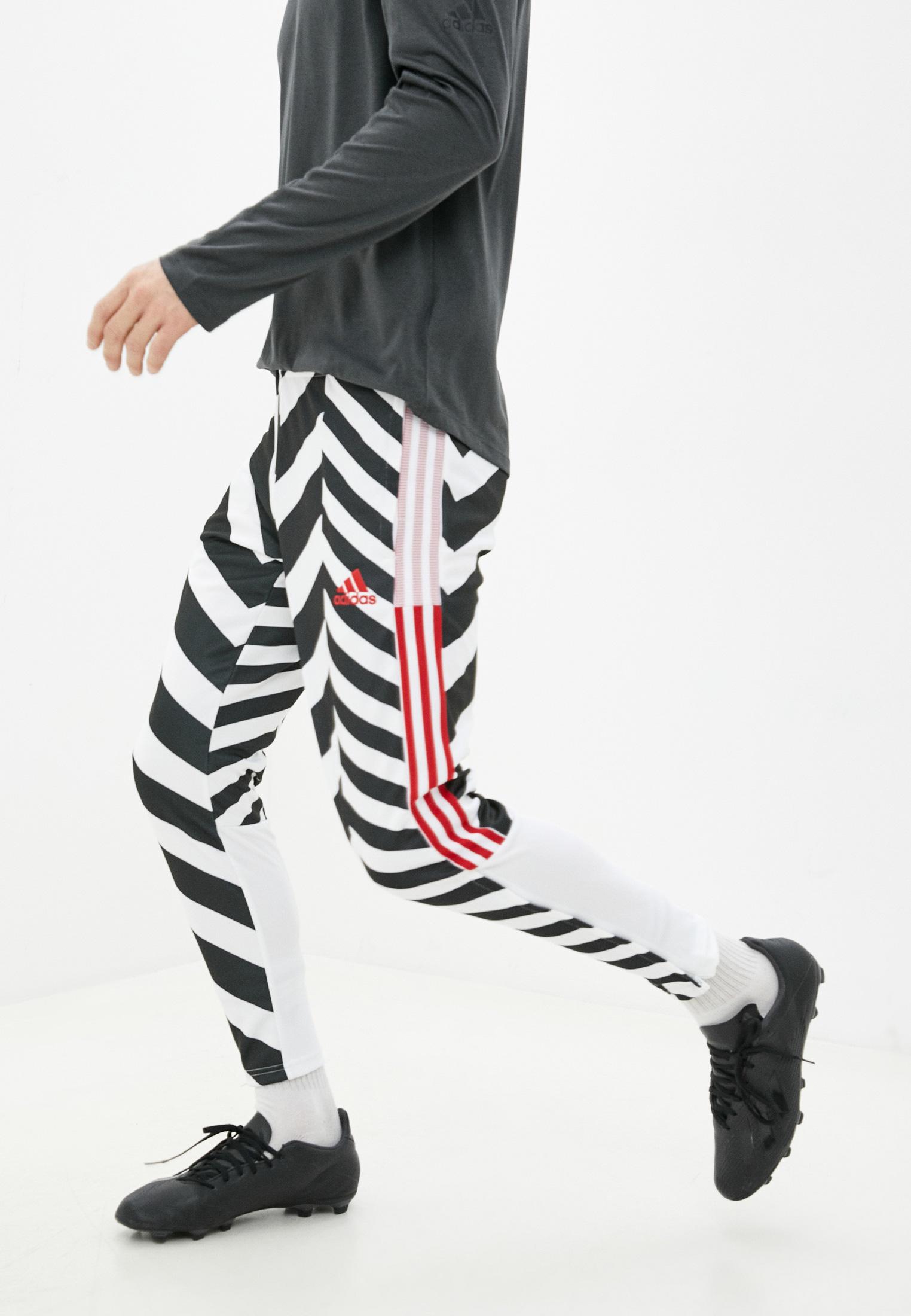 Мужские спортивные брюки Adidas (Адидас) GK9435
