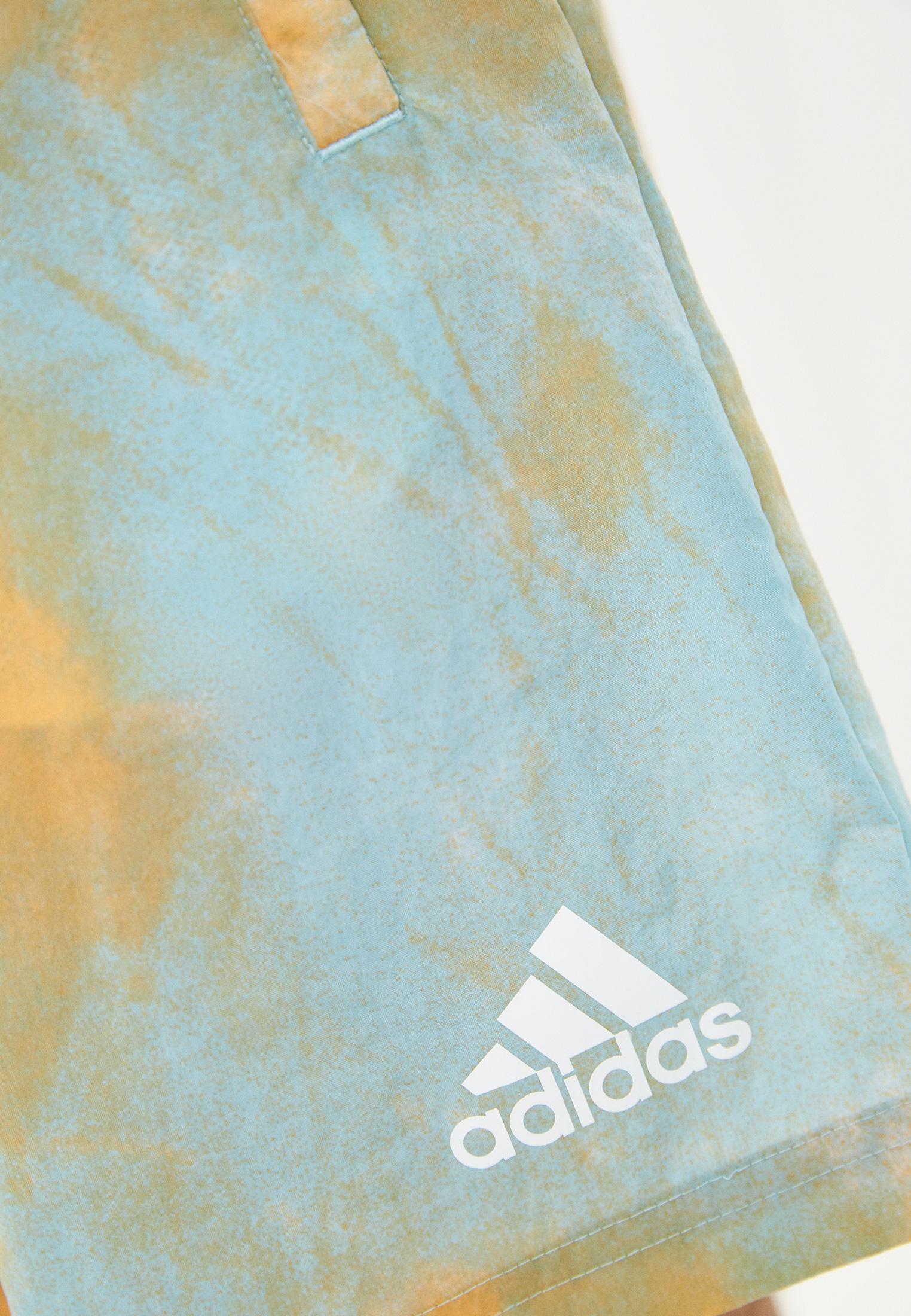 Мужские спортивные шорты Adidas (Адидас) GK9620: изображение 4