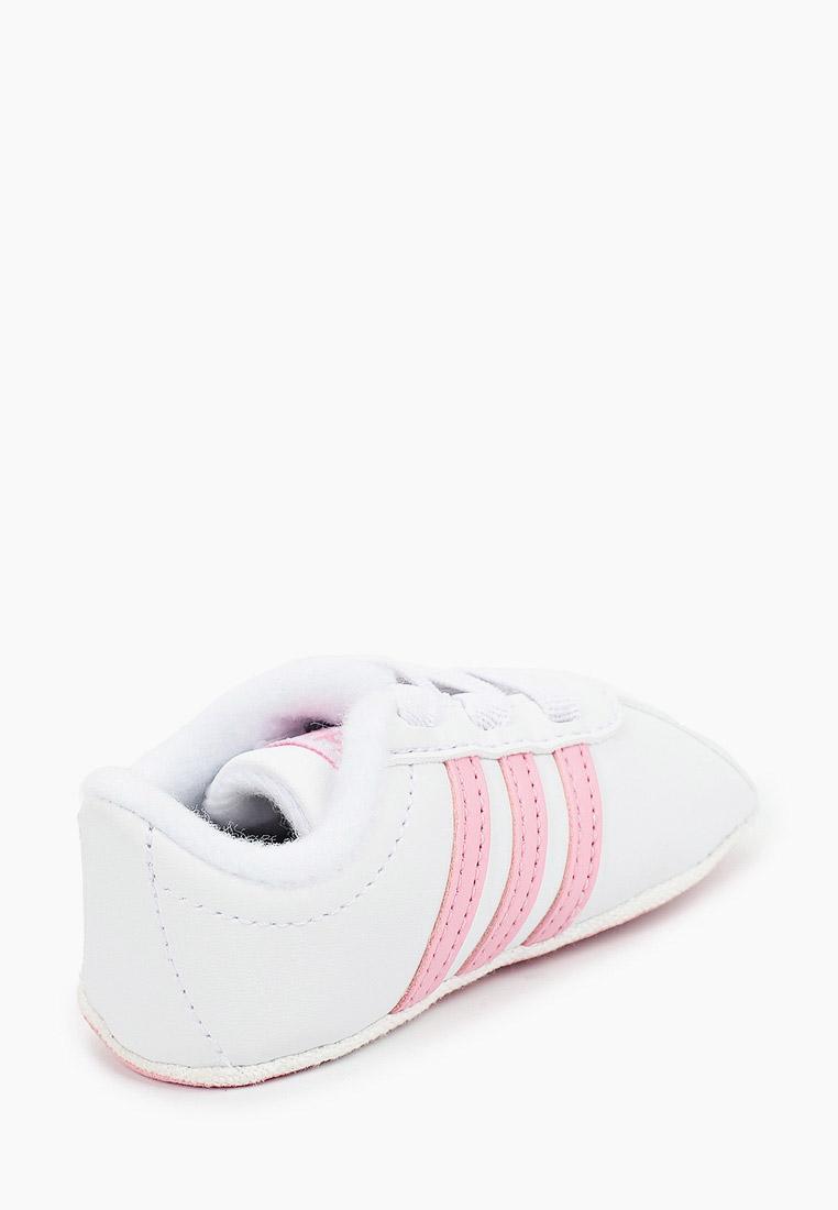 Кеды для мальчиков Adidas Originals (Адидас Ориджиналс) F36603: изображение 3