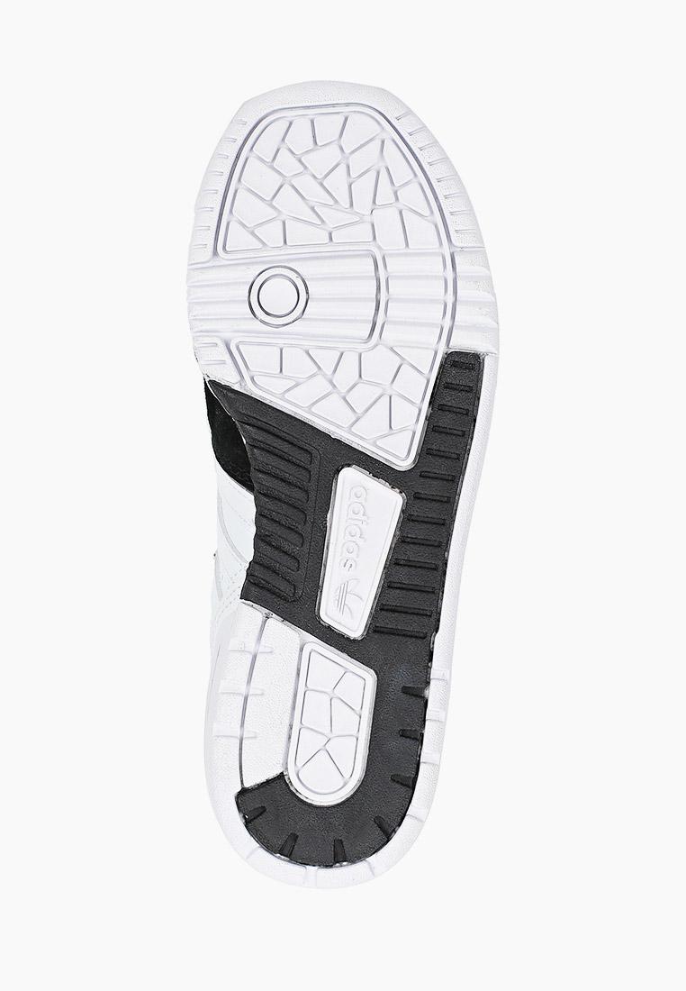 Кеды для мальчиков Adidas Originals (Адидас Ориджиналс) FV4949: изображение 5