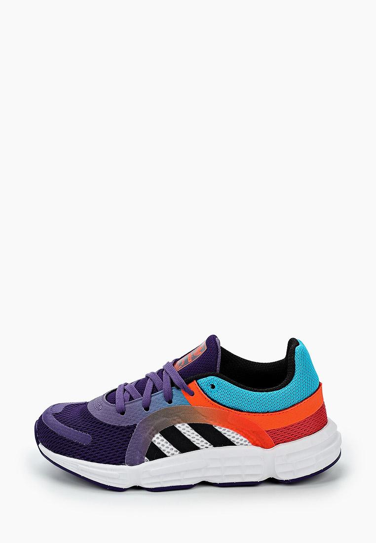 Кроссовки для мальчиков Adidas Originals (Адидас Ориджиналс) FW8044: изображение 1