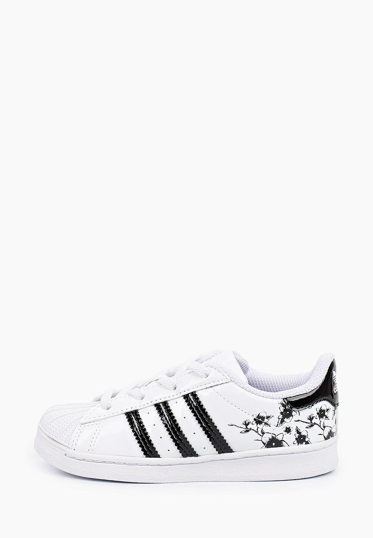 Кеды для мальчиков Adidas Originals (Адидас Ориджиналс) FW0774: изображение 1