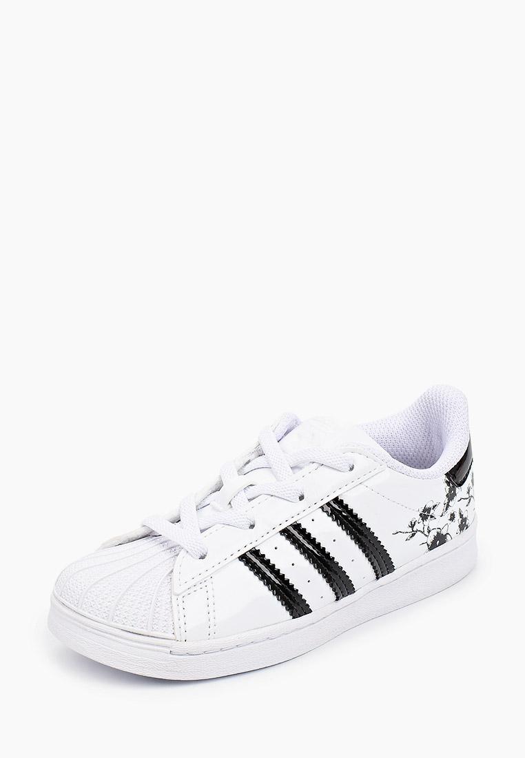 Кеды для мальчиков Adidas Originals (Адидас Ориджиналс) FW0774: изображение 2