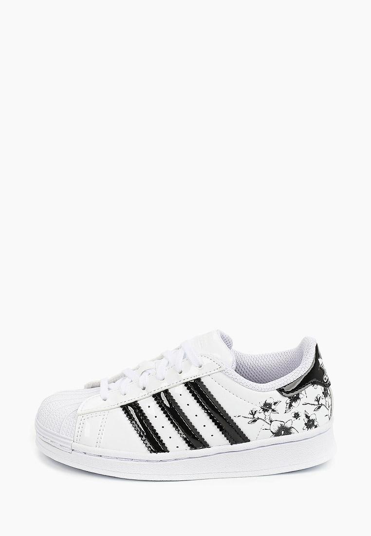 Кеды для мальчиков Adidas Originals (Адидас Ориджиналс) FW0777