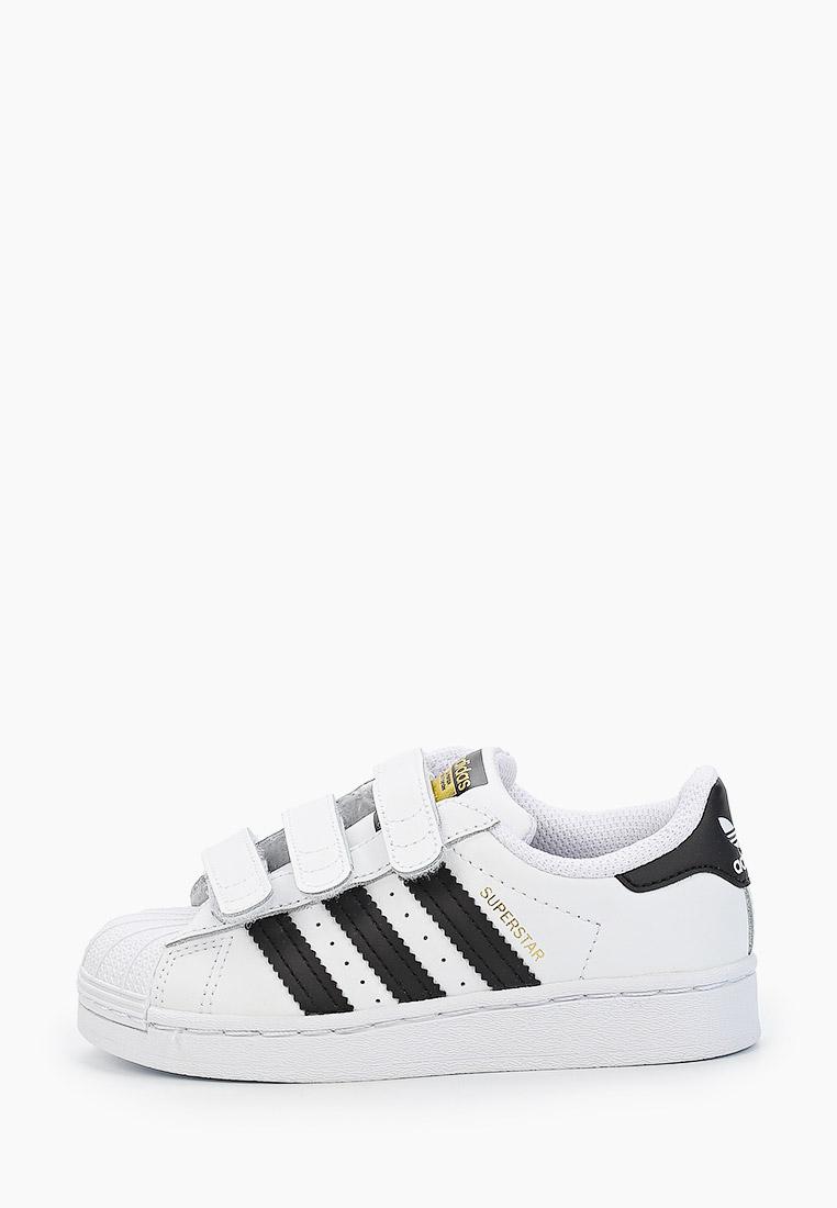 Кеды для мальчиков Adidas Originals (Адидас Ориджиналс) EF4838: изображение 1
