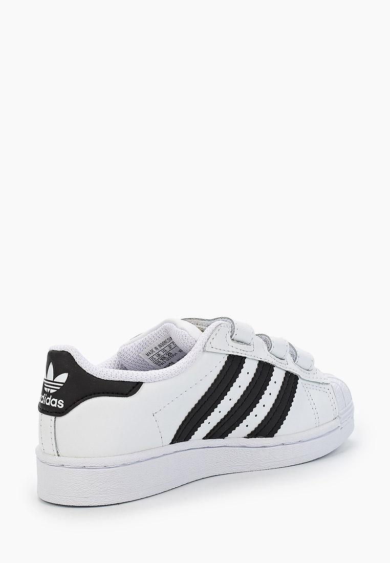 Кеды для мальчиков Adidas Originals (Адидас Ориджиналс) EF4838: изображение 2