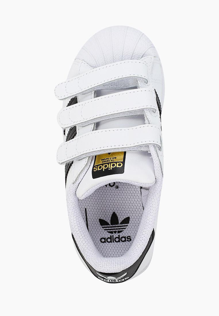 Кеды для мальчиков Adidas Originals (Адидас Ориджиналс) EF4838: изображение 3