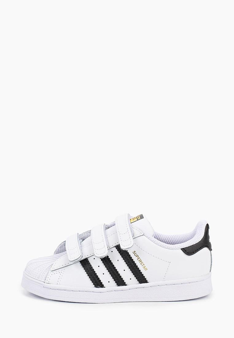 Кеды для мальчиков Adidas Originals (Адидас Ориджиналс) EF4842: изображение 1