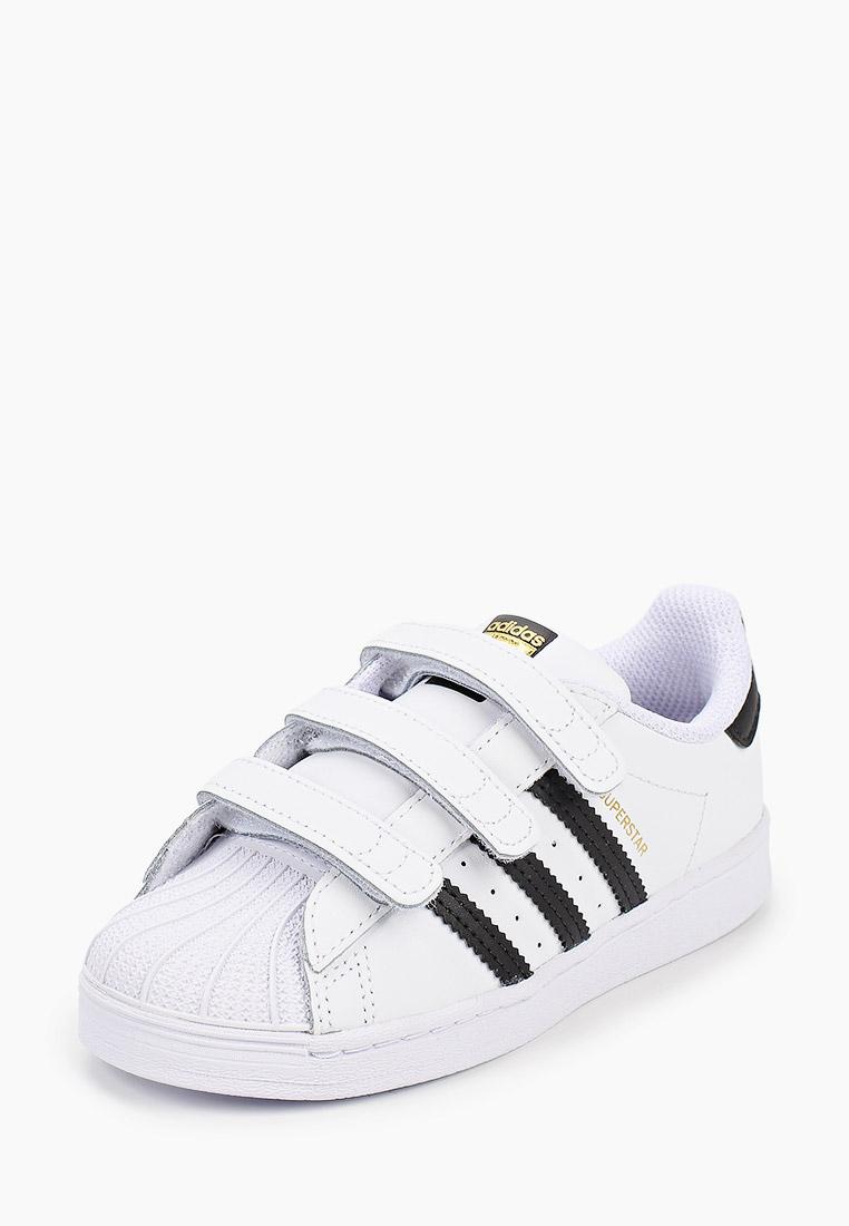Кеды для мальчиков Adidas Originals (Адидас Ориджиналс) EF4842: изображение 2