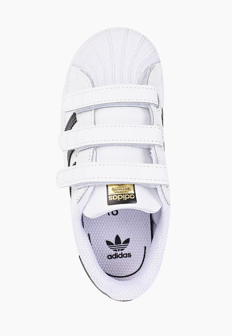 Кеды для мальчиков Adidas Originals (Адидас Ориджиналс) EF4842: изображение 4
