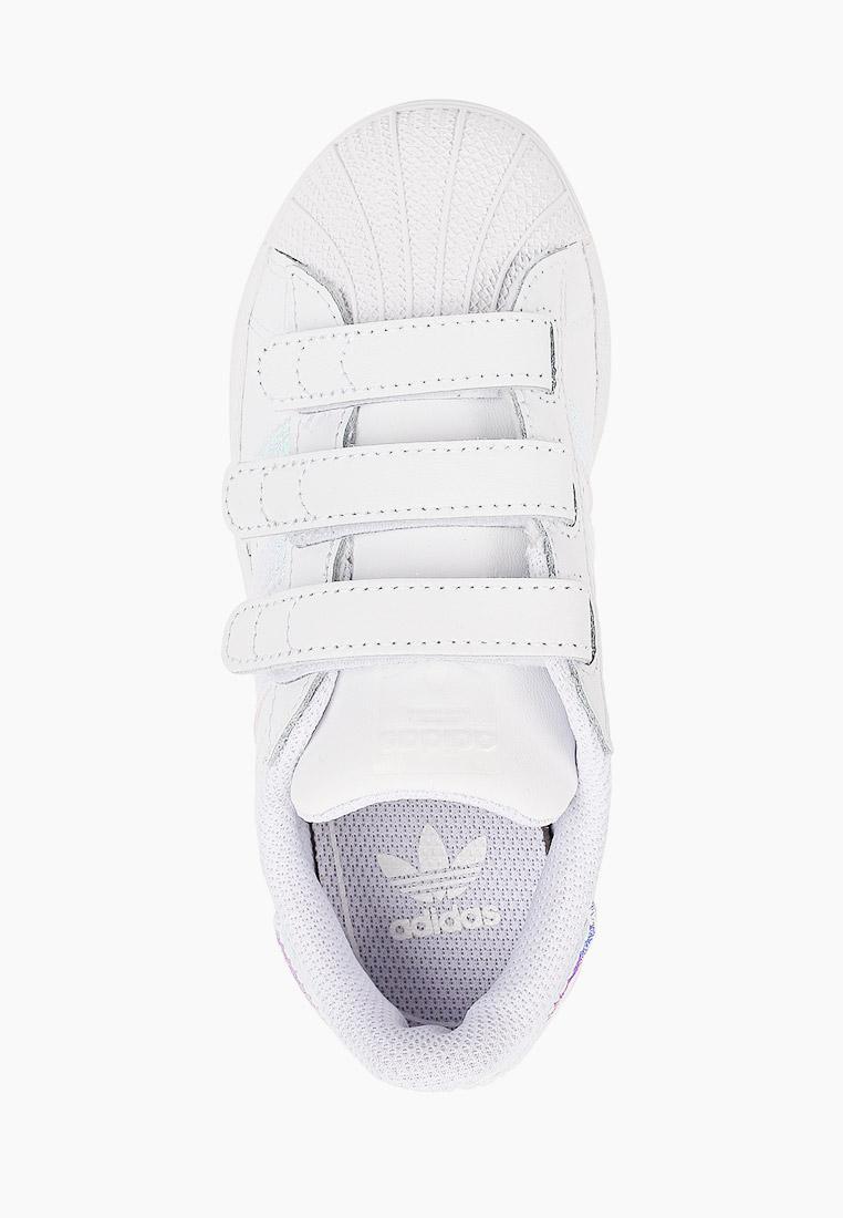 Кеды для мальчиков Adidas Originals (Адидас Ориджиналс) FV3655: изображение 4