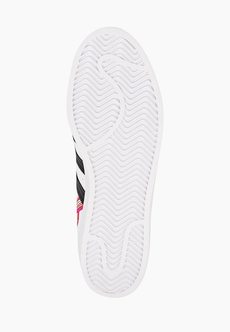 Кеды для мальчиков Adidas Originals (Адидас Ориджиналс) FX5202: изображение 5