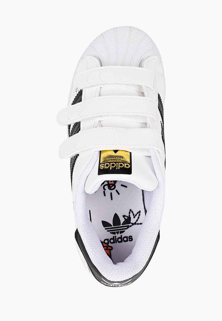 Кеды для мальчиков Adidas Originals (Адидас Ориджиналс) FZ0615: изображение 4