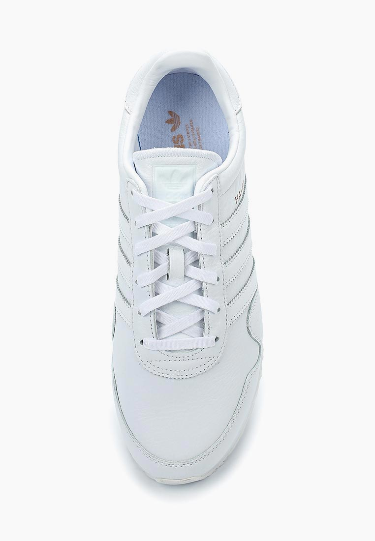 Adidas Originals (Адидас Ориджиналс) CQ3037: изображение 4