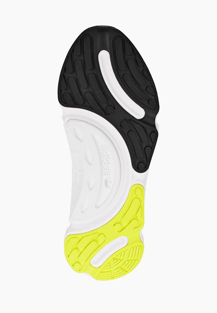 Мужские кроссовки Adidas Originals (Адидас Ориджиналс) FV0977: изображение 5