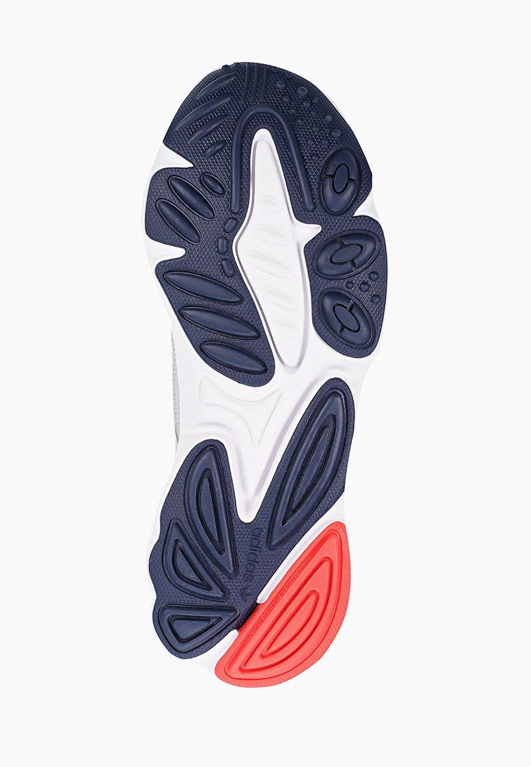 Мужские кроссовки Adidas Originals (Адидас Ориджиналс) FV9650: изображение 5
